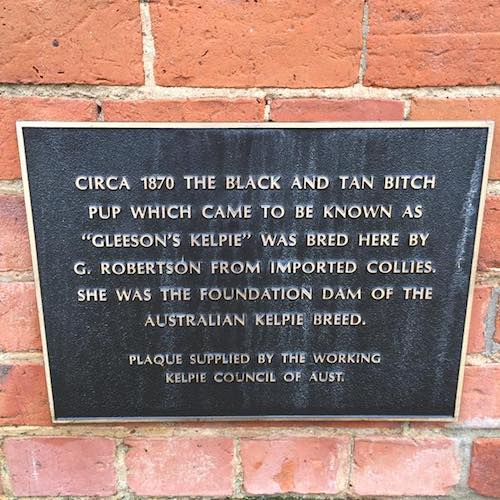 A plaque comemorating the birthplace of the kelpie